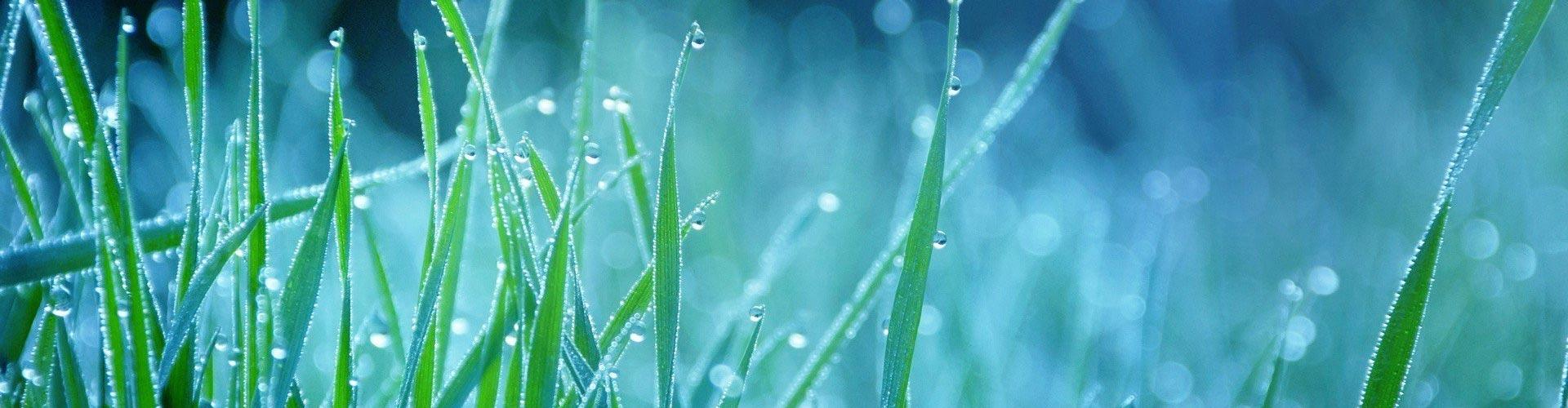 Oferta: deszczownia, deszczownia bębnowa, deszczownie, deszczownie szpulowe